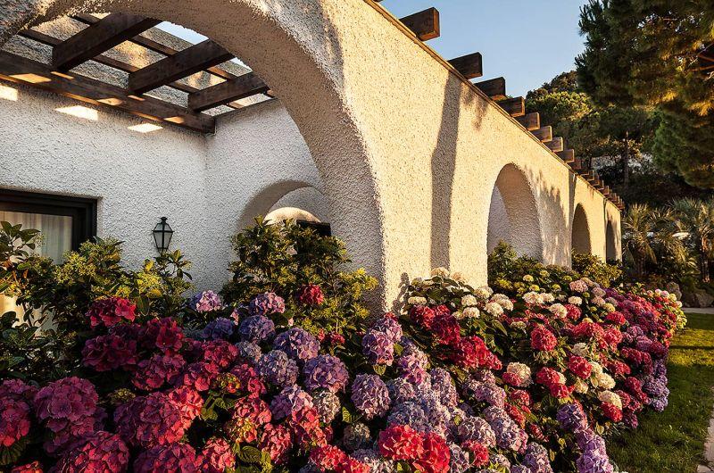 Ischia: im Garten Eden wohnen