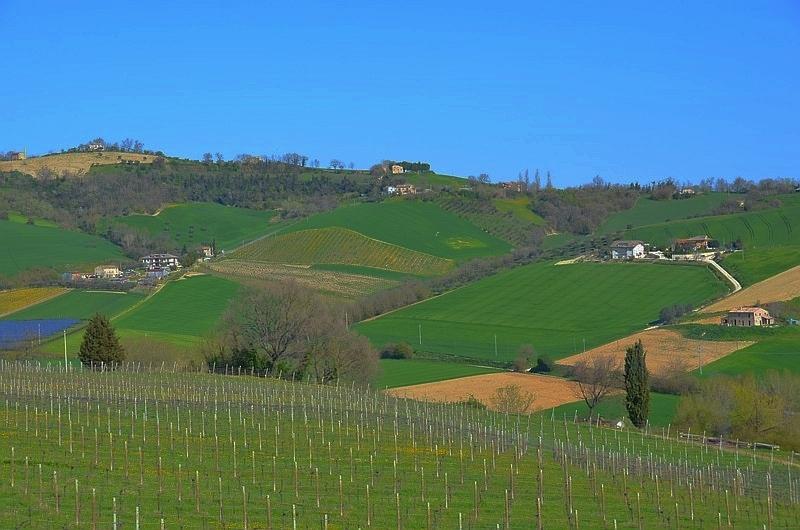 """""""Borghi"""" und Hügel in der Provinz Ascoli Piceno"""